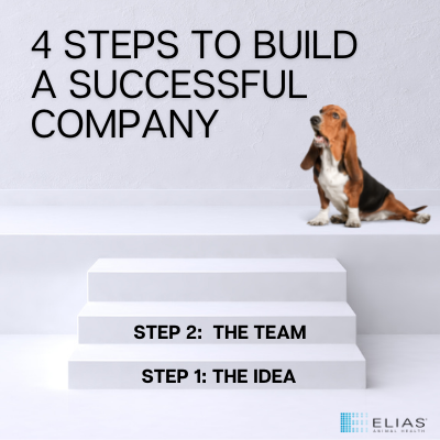 step 2 in building a successful company