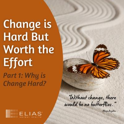why is change hard